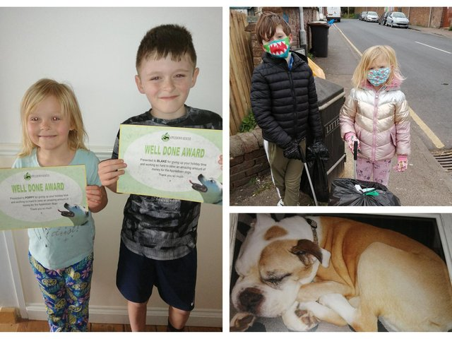 Poppy and Blake with their certificates; a day of litter picking; Lola the rescue dog.