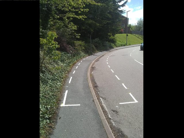 The lines covered the pavement over a long stretch on Brendon Avenue