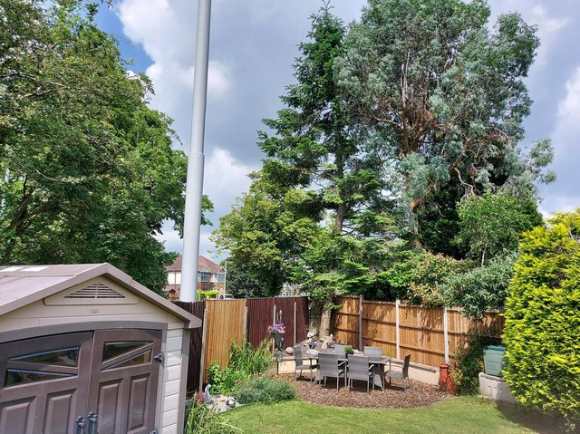 The larger than life mast appeared without warning, residents say