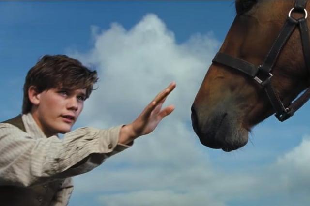 DreamWorks Pictures War Horse (2011)